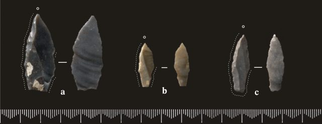 P1_Fig025